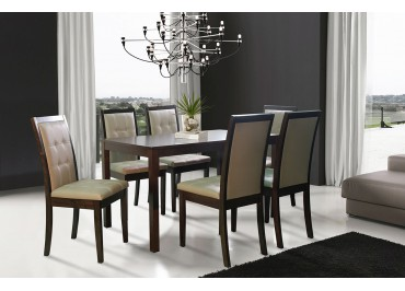 303660_230105 1+6 seater dining set